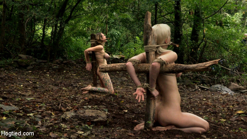 Bdsm xxx blonde sub gets tied up and has her holes filled 1
