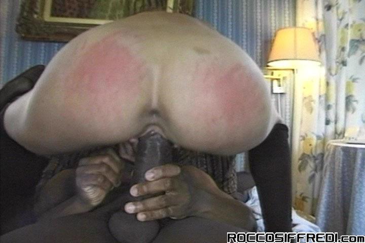 Omar Williams Porn