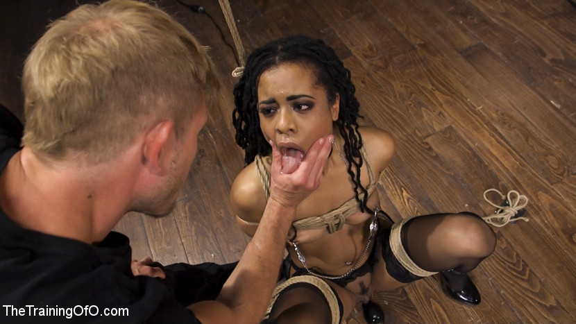 Lesbian scissoring and tribbing